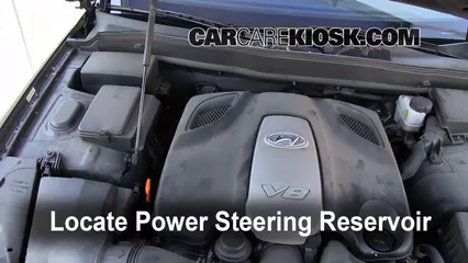 2009 Hyundai Genesis 4.6 4.6L V8 Power Steering Fluid Fix Leaks